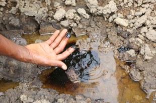 Shell und die Ölverschmutzung im Nigerdelta – kein Ende in Sicht