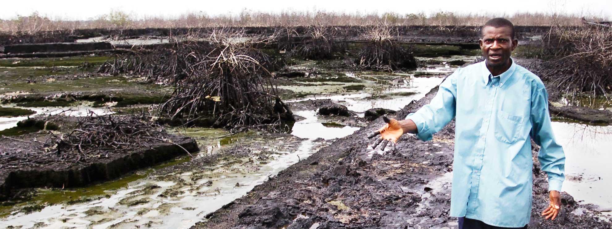 Pastor Christian Lekoya Kpandei zeigt den Schaden, den das Öl auf seinen Feldern angerichtet hat. © Amnesty International