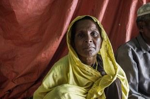 Crimes contre l'humanité systématiques visant à terroriser et chasser les Rohingyas