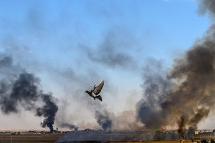 Preuves accablantes de crimes de guerre commis par les forces armées turques et les milices alliées