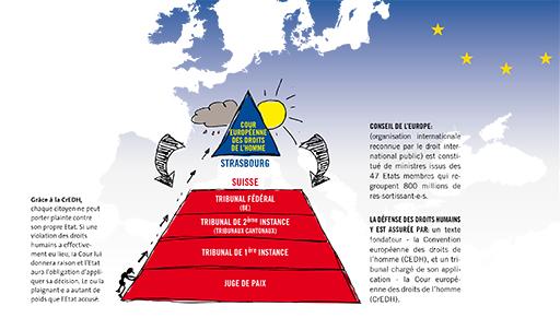 infographie CrEDH.jpg