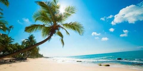 Le spiagge paradisiache dello Sri Lanka nascondono una drammatica realtà  © Anton Gvozdikov/Shutterstock.com
